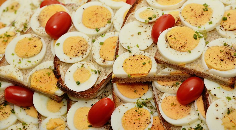 Know About The Benefits Of Protein