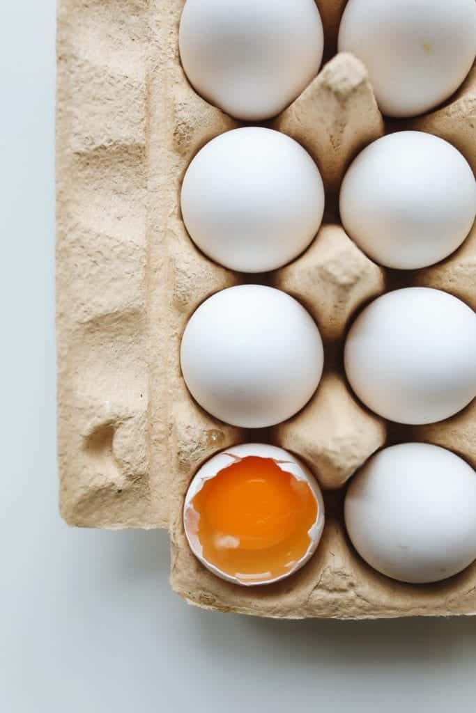 Protein Foods For Best Health