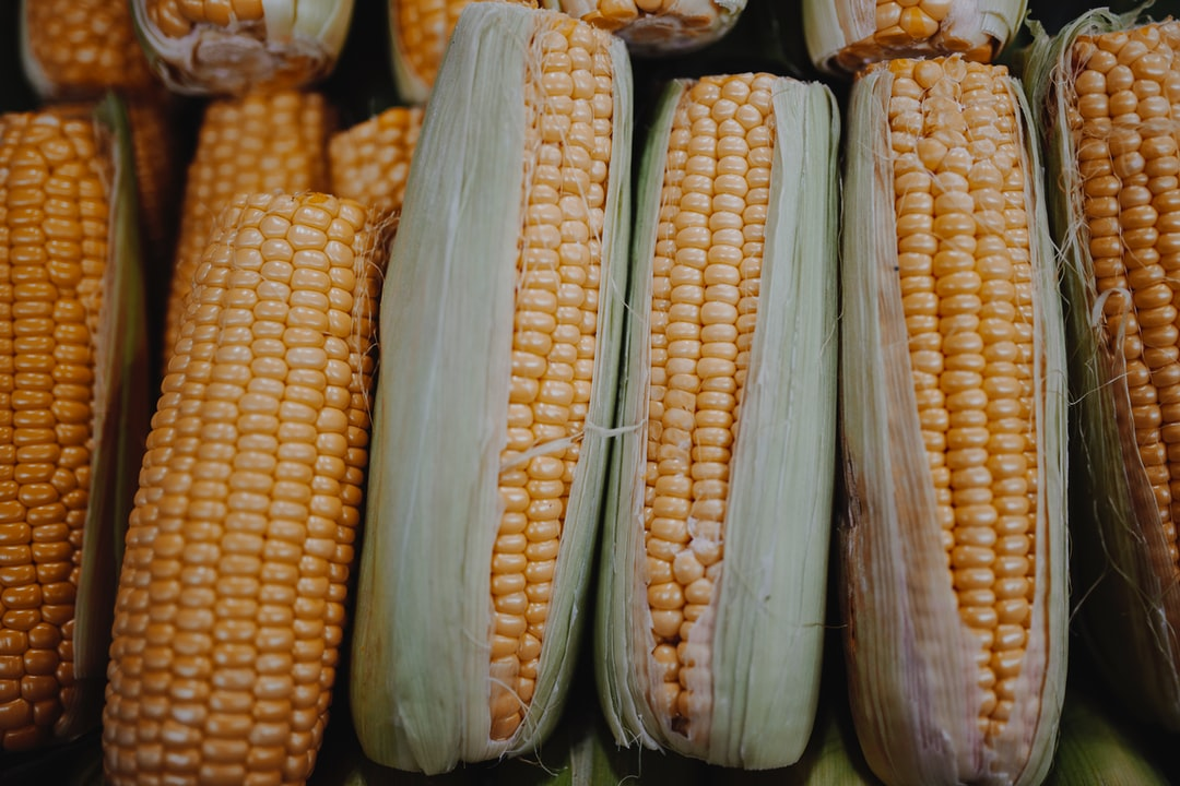 A group of corn